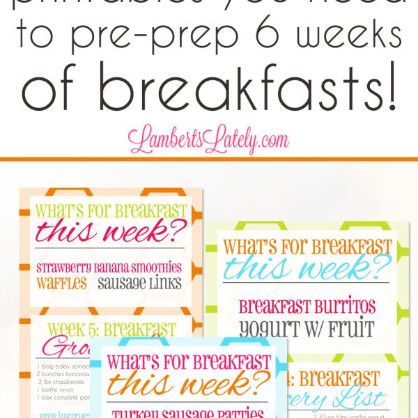 The Sunday Night Breakfast Project: 6 Weeks of Breakfast Prep Ideas & Printables!