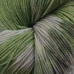 Superwash Sock Yarn - Cymbidium Orchid