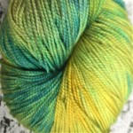 Superwash Sock Yarn - Companion Herb