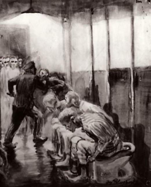 Latrine di Auschwitz 1 - Disegno