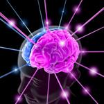 Modificare il cervello