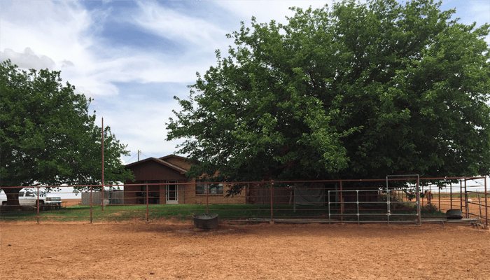 Lamesa Country Home for Sale