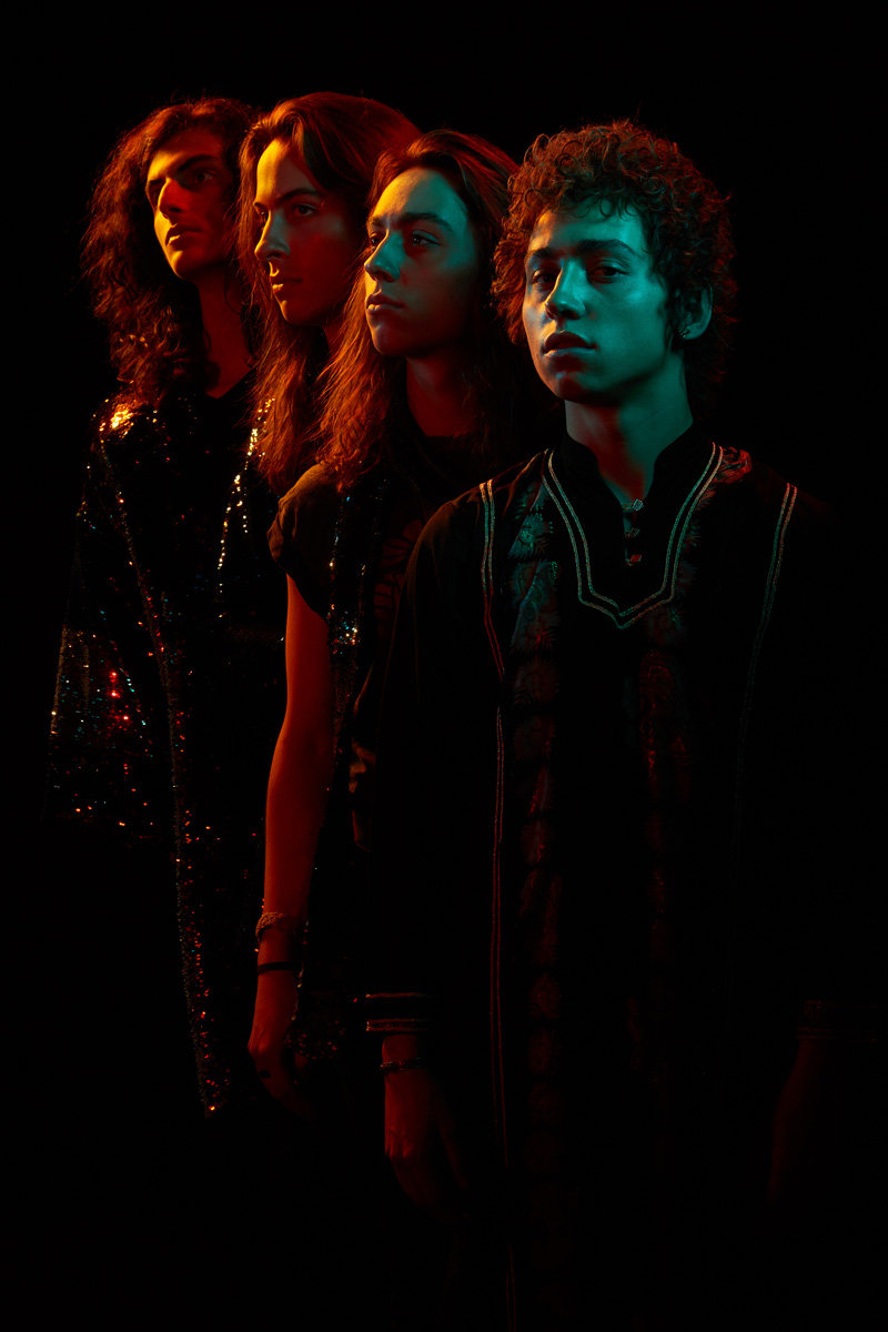 Greta Van Fleet Concert Reviews