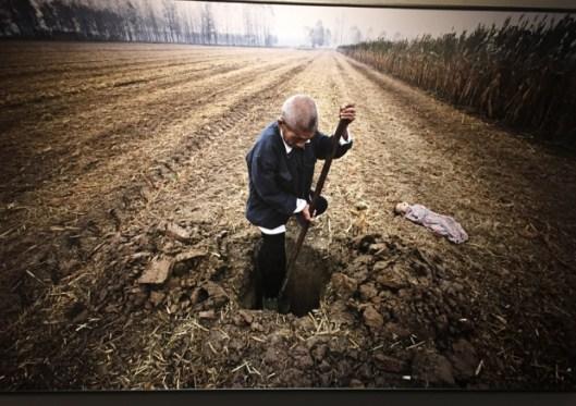World Press Photo 2015, Lu Guang, Sviluppo e Inquinamento in CIna