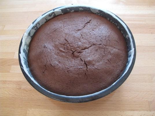 A questo punto versate il vostro composto, livellandolo con una spatola (ma senza sbattere il contenitore come si fa di solito, per non interrompere l'azione del lievito). Infornate per circa 40 minuti, controllando la cottura con uno stuzzicadenti, facendo attenzione che l'interno non si asciughi troppo e rimanga ancora morbido. Estraete, lasciate raffreddare completamente e quindi rovesciate la torta di cioccolato e yogurt su un piatto prima di spolverarla con lo zucchero a velo.