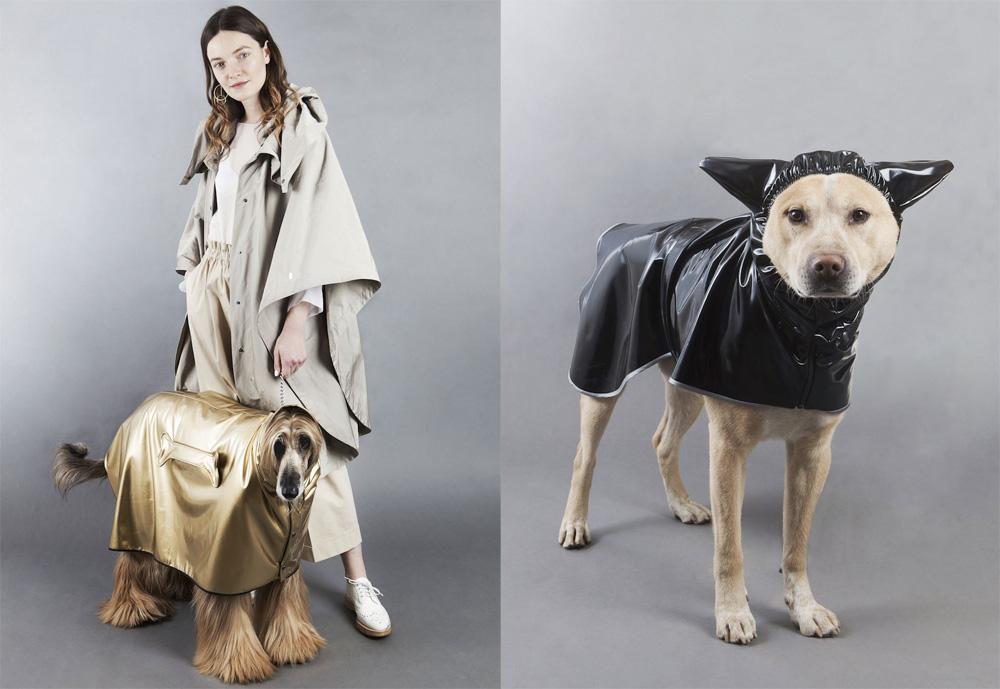 Dog-a-Porter di Temellini Milano
