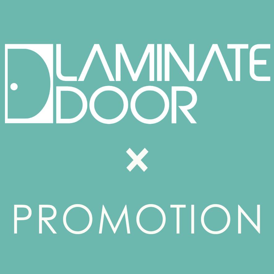 www.laminatedoor.com.sg