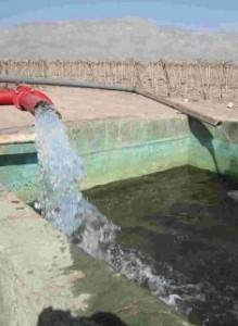 Cobre en eletrobombas de alta eficiencia  para riego agrícola
