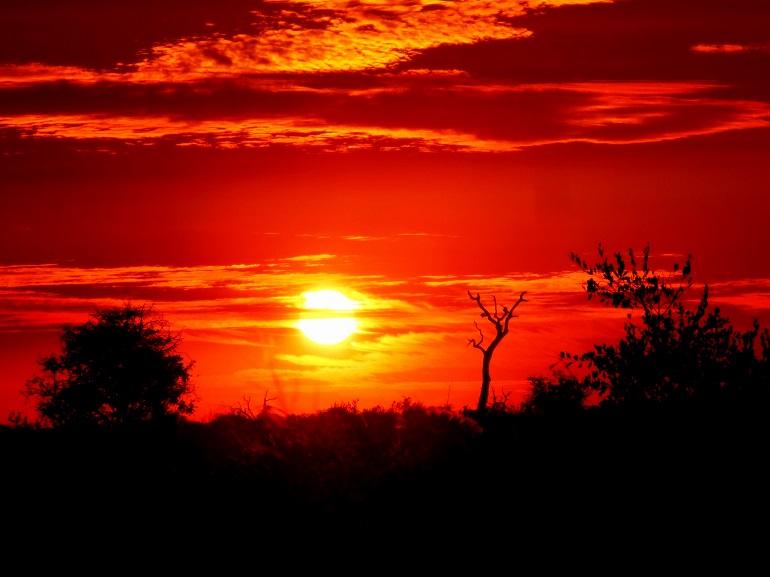 Cielo-Parque-Kruger-sudafrica