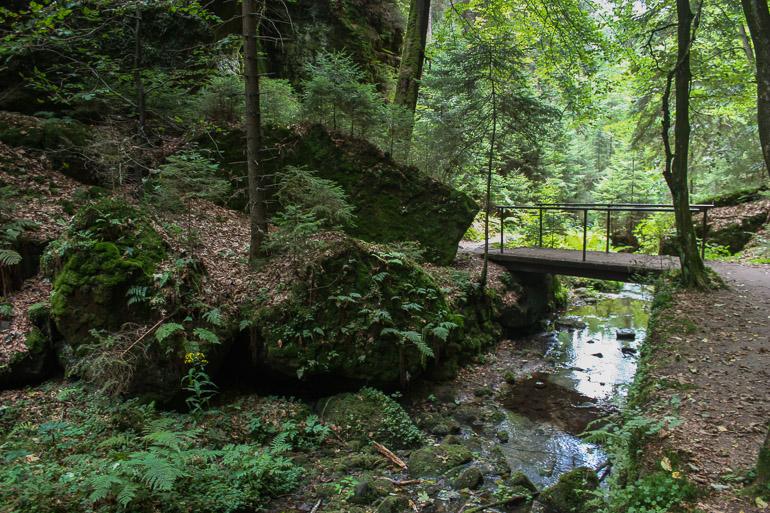canon-kamenice-pravcicka-brana