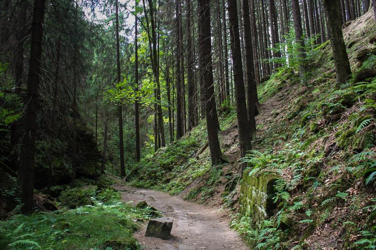 sendero-pravcicka-brana
