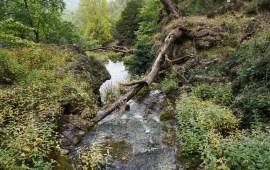 nacimiento-del-rio-mundo