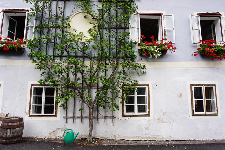 fachada-hallstatt