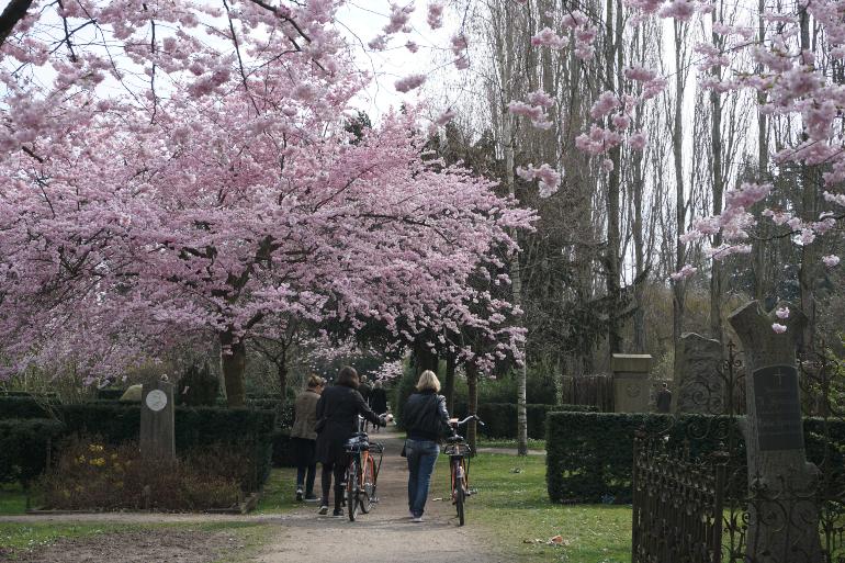 chicas paseando por el Cementerio de Assistens