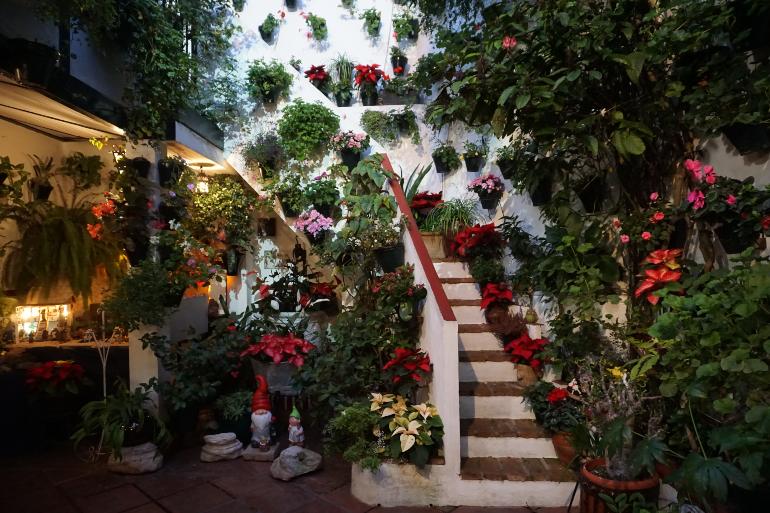 patio cordobés repleto de flores y macetas alrededor de una escalera