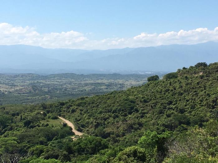 En el Día de la Biodiversidad, disfrute este recorrido virtual por la ecoreserva La Tribuna 2 27 mayo, 2020