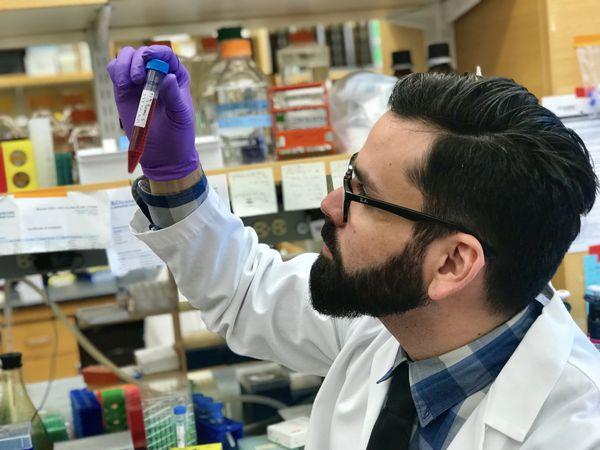 Con mirada atenta y delicadeza extrema, Almirón analiza una muestra en laboratorio. GENTILEZA.