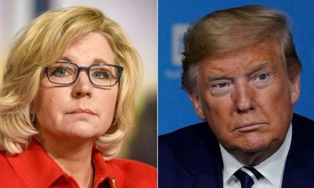 MAGA faithful rage at Liz Cheney after she urges Trump not to rush an end of social distancing