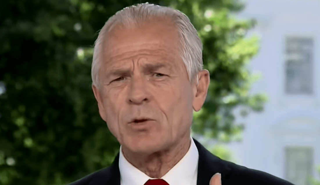 White House trade adviser claims looters have destroyed the US economy
