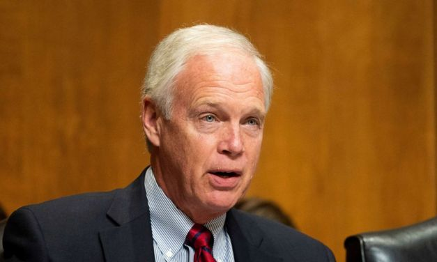 GOP senator Ron Johnson brags that his Biden investigation is meant to help Trump win reelection