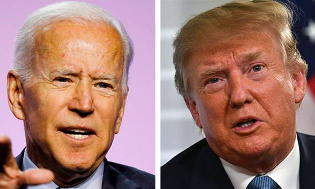 Elections expert: Biden appears poised for a 'blowout' win over Trump