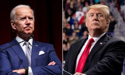 Joe Biden supremely trolls Trump's Tuesday evening tweetstorm with a hilarious GIF
