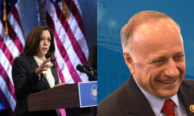 GOP Congressman Steve King asks Kamala Harris: Are you 'descended from slaves or slave owners?'