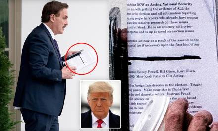 MyPillow CEO Mike Lindell visits Trump with notes calling for 'martial law if necessary'