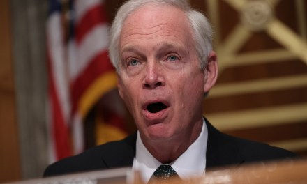 GOP Sen. Ron Johnson: If the Capitol rioters had been black I might have been 'concerned'
