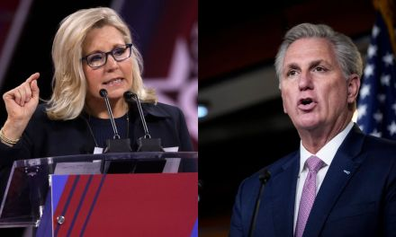 Kevin McCarthy backs down on threat to punish Republicans after Pelosi names Liz Cheney to January 6th Select Committee