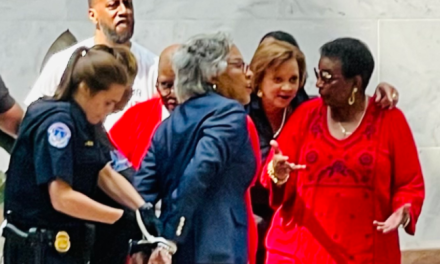 Twitter shames Capitol Police for arresting peacefully protesting black congresswoman