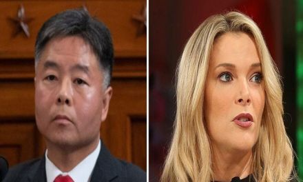 Ted Lieu burns Megyn Kelly down after she tries to minimize the Capitol riots