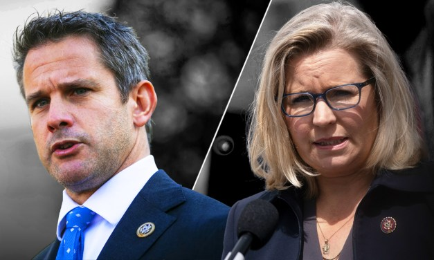 Cheney and Kinzinger may be ready to leave the GOP, NY Times reporter reveals