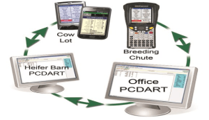 PCDART use case cycle