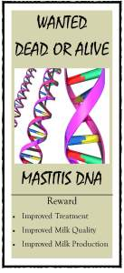 Wanted Poster Mastitis DNA