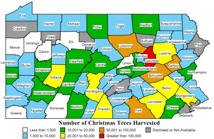 1.2 Million Christmas trees were cut down in PA in 2007.