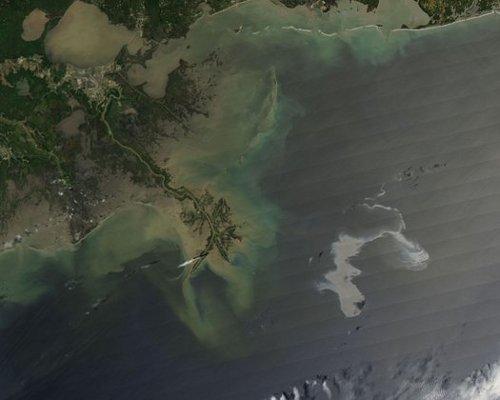 BP Gulf Coast Oil Spill