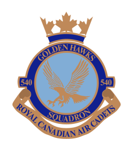 540 Golden Hawks Crest