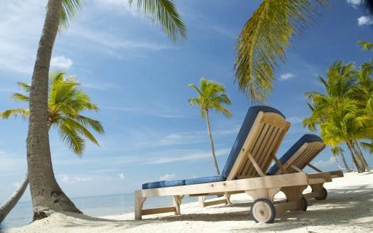 Florida Paradise
