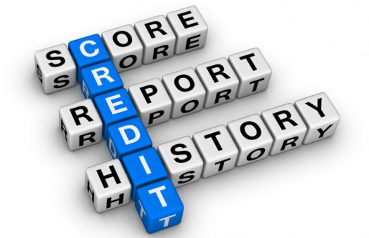 Credit Report Fine Print