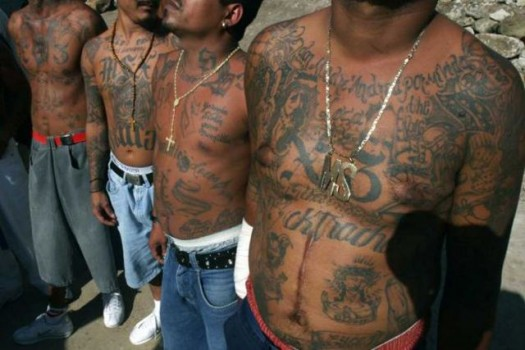 Tatted Gangs Youth