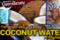 The Proper Way To Extract Coconut Water By Hand! – The LanceScurv Show