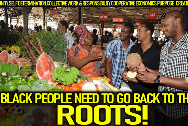 BLACK PEOPLE NEED TO GO BACK TO THEIR ROOTS IN ORDER TO SURVIVE THIS WICKED UNRIGHTEOUS ORDER!