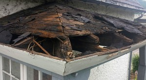 old wood roof