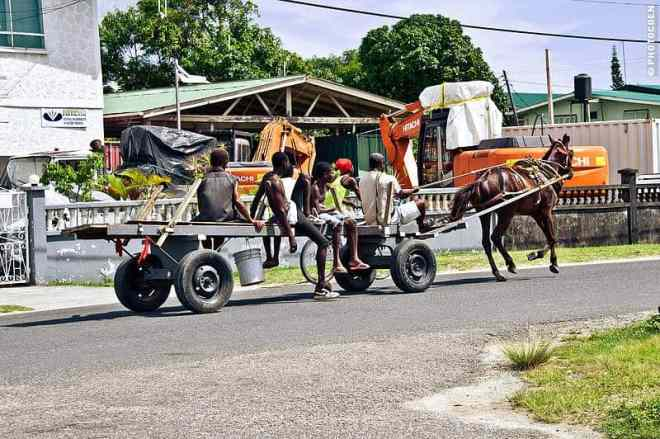 Common means of transport in Guyana