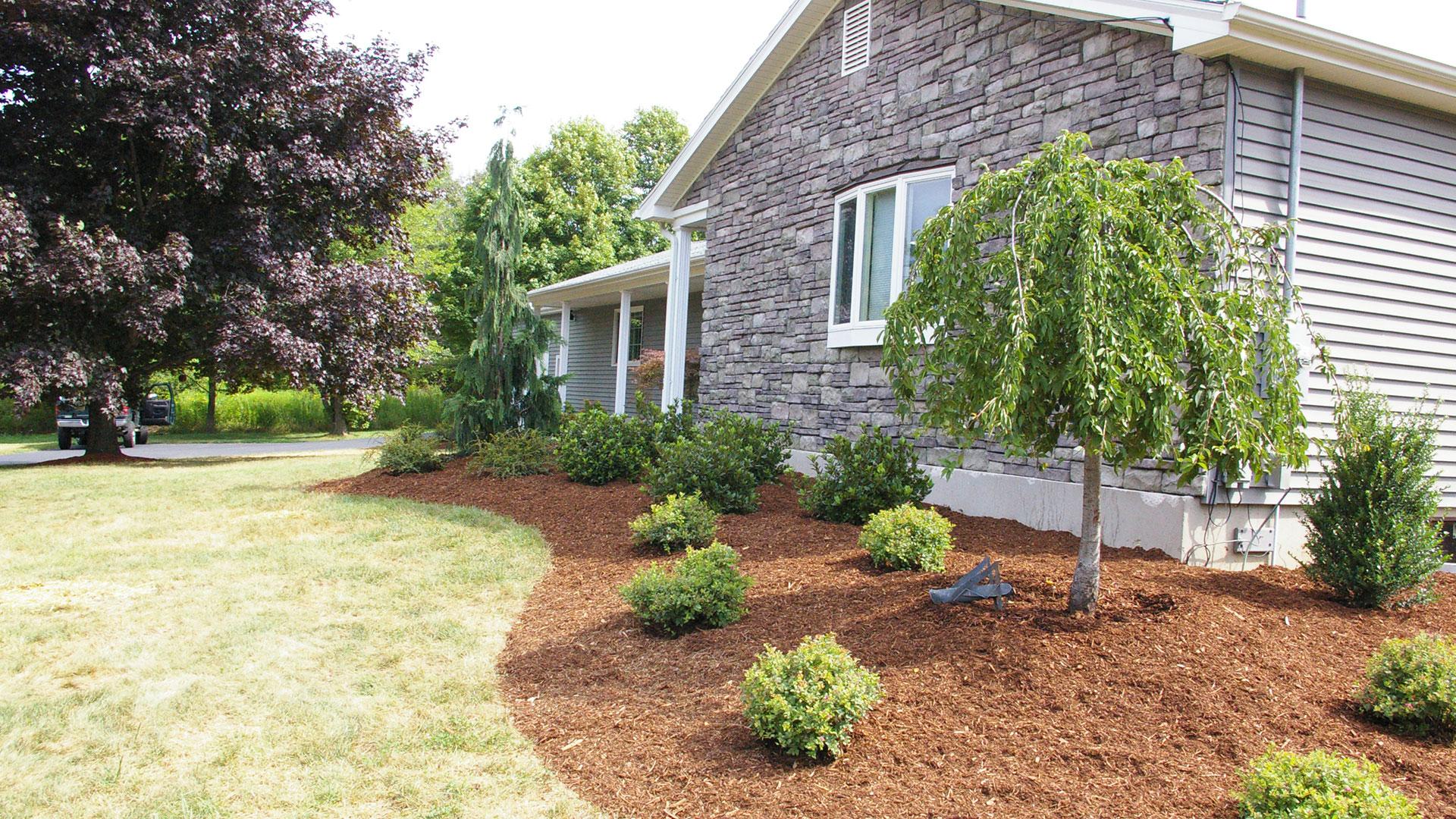 Foundation Plantings Land Designs Unlimited Llc