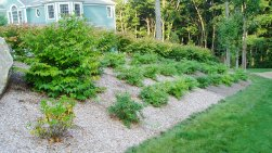 Newtown CT Landscaping