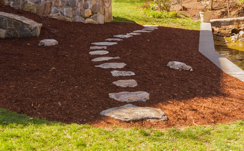 How to create a curved stepping stone path land designs unlimited llc completed stepping stone path workwithnaturefo