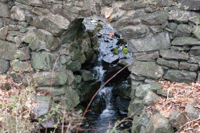 Close-up of Stream Through Wall
