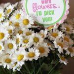 Teacher Appreciation Ideas: Last {SECOND} Gift!